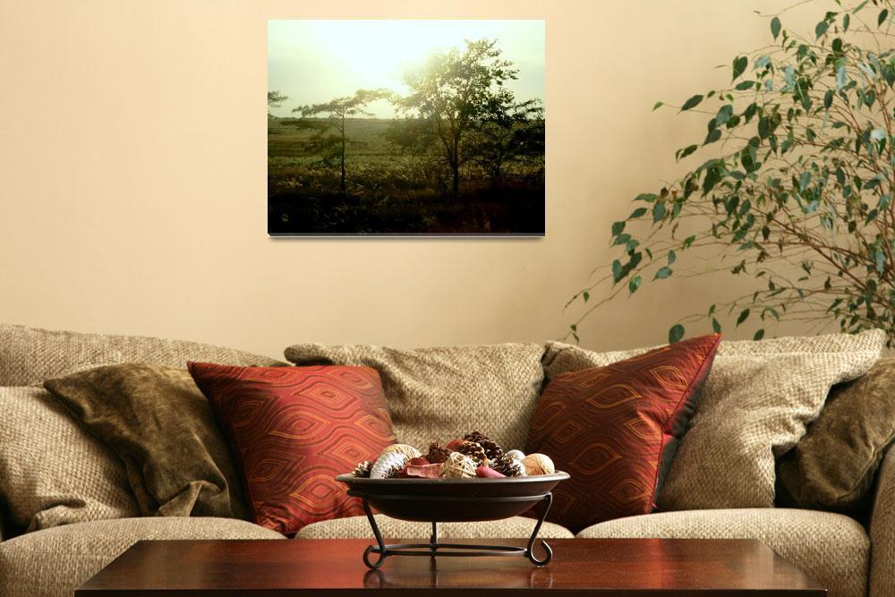 """""""twilight trees""""  (2009) by MayaDvalishvili"""