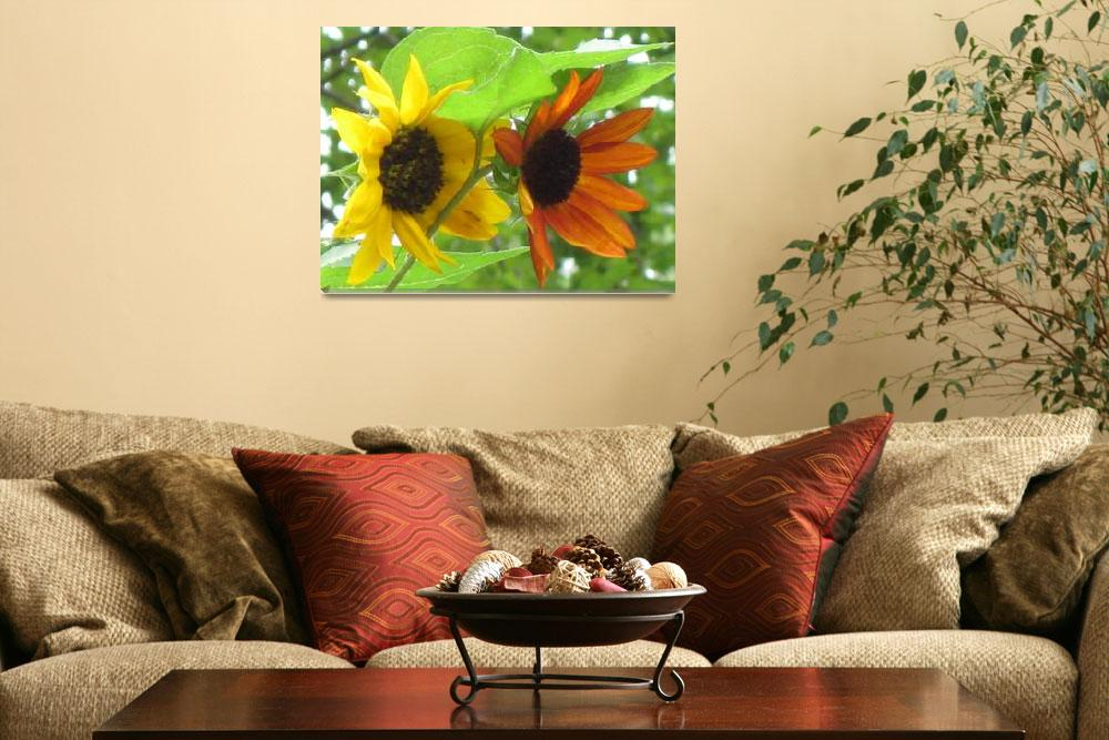 """""""Sunflower sisters""""  (2009) by henrimonet"""