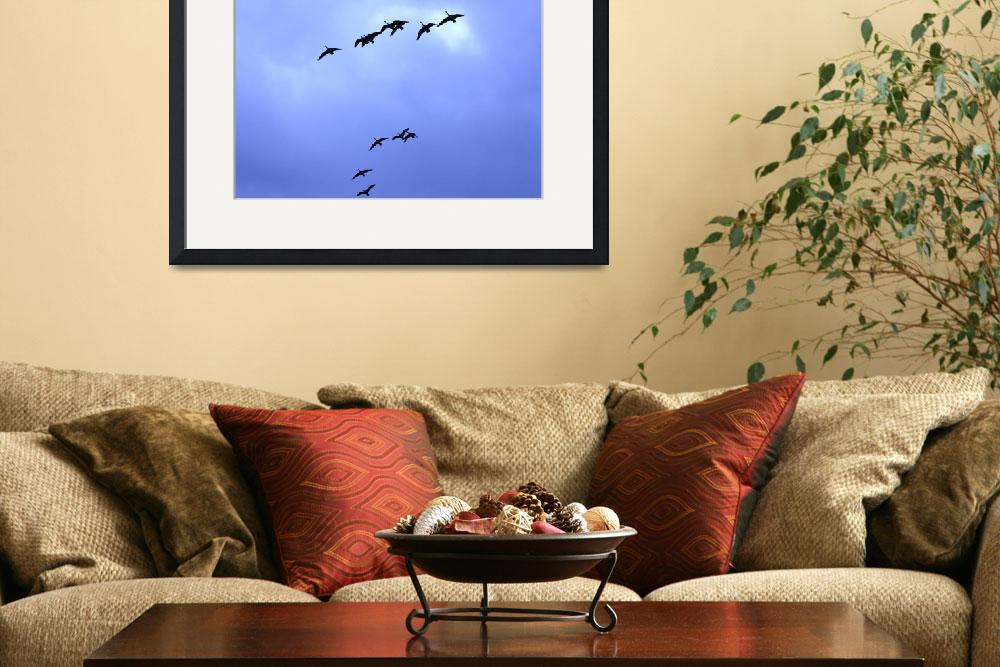 """Geese in Flight""  (2010) by ART4YOUR2EYES"