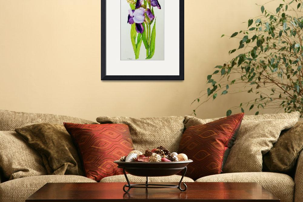 """""""Mauve and purple irises with two buds""""  by fineartmasters"""