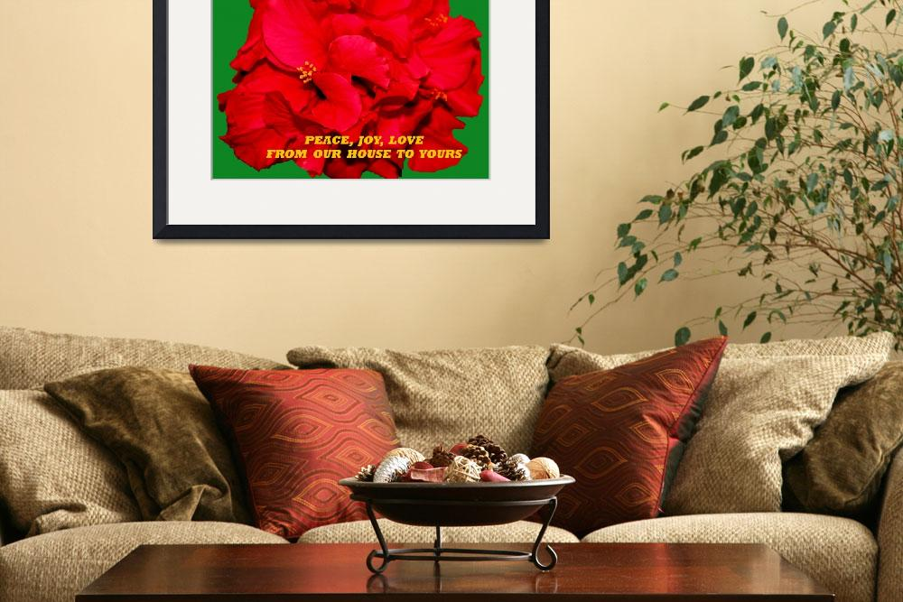 """Christmas Hibiscus Card 2008""  (2008) by rayjacque"