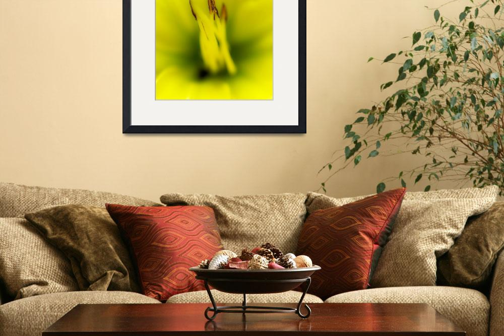 """Yellow Lily&quot  (2012) by Chileman"