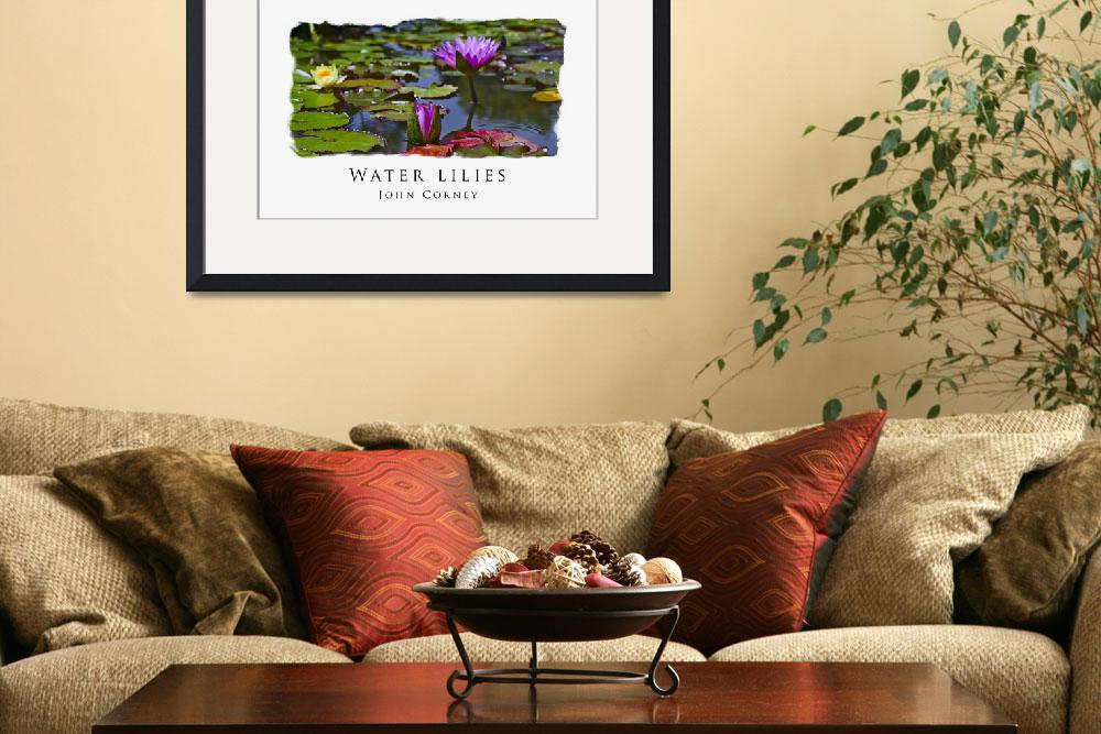 """""""Water-Lilies Poster&quot  (2008) by johncorney"""