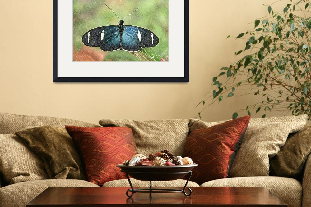 """""""Blue Butterfly on a Leaf&quot  (2015) by rhamm"""