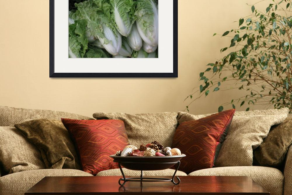 """""""Chinese Cabbage""""  (2008) by OneMansPerspectives"""