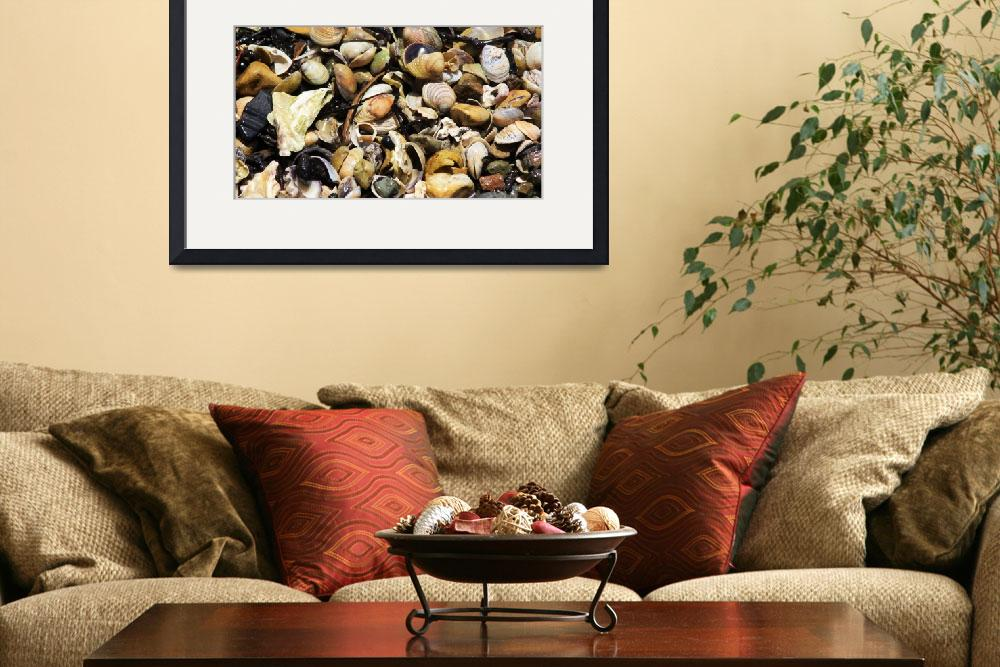 """""""Shells and Pebbles&quot  (2013) by monmoimages"""