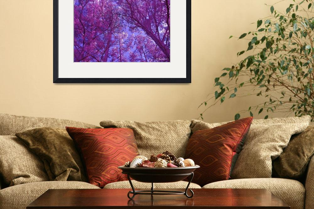 """""""Pink Forest&quot  (2011) by bettynorthcutt"""