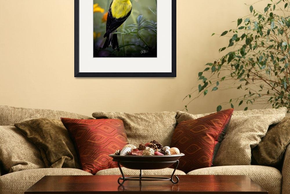 """Angel Wing Series Yellow Finch&quot  (2011) by AngelWingsArt"