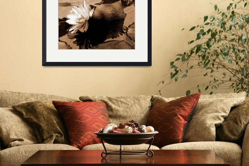 """""""Water Lily Floral and Still Life in Sepia Tones&quot  (2007) by PhotographsByCarolFAustin"""