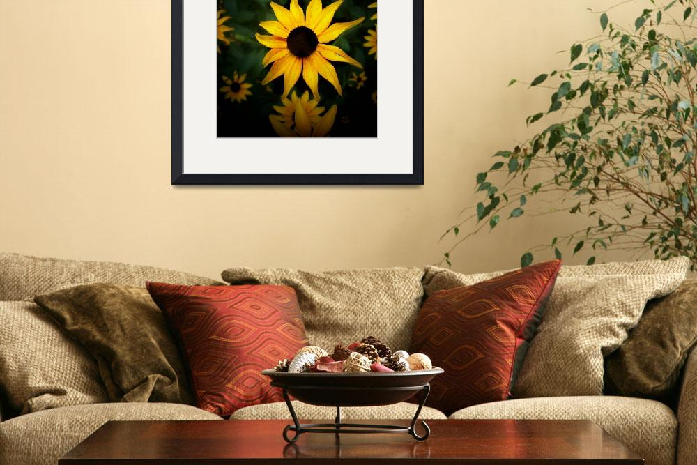 """""""A pretty yellow sunflower&quot  (2011) by jessmk"""