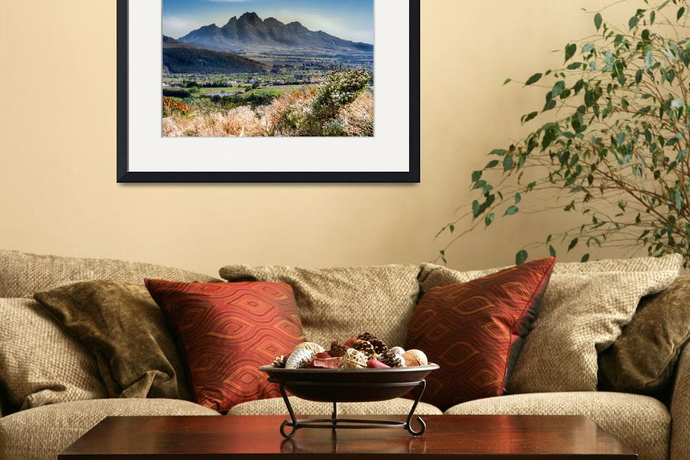 """""""Wine Region, Capetown, South Africa&quot  (2016) by mjphoto-graphics"""