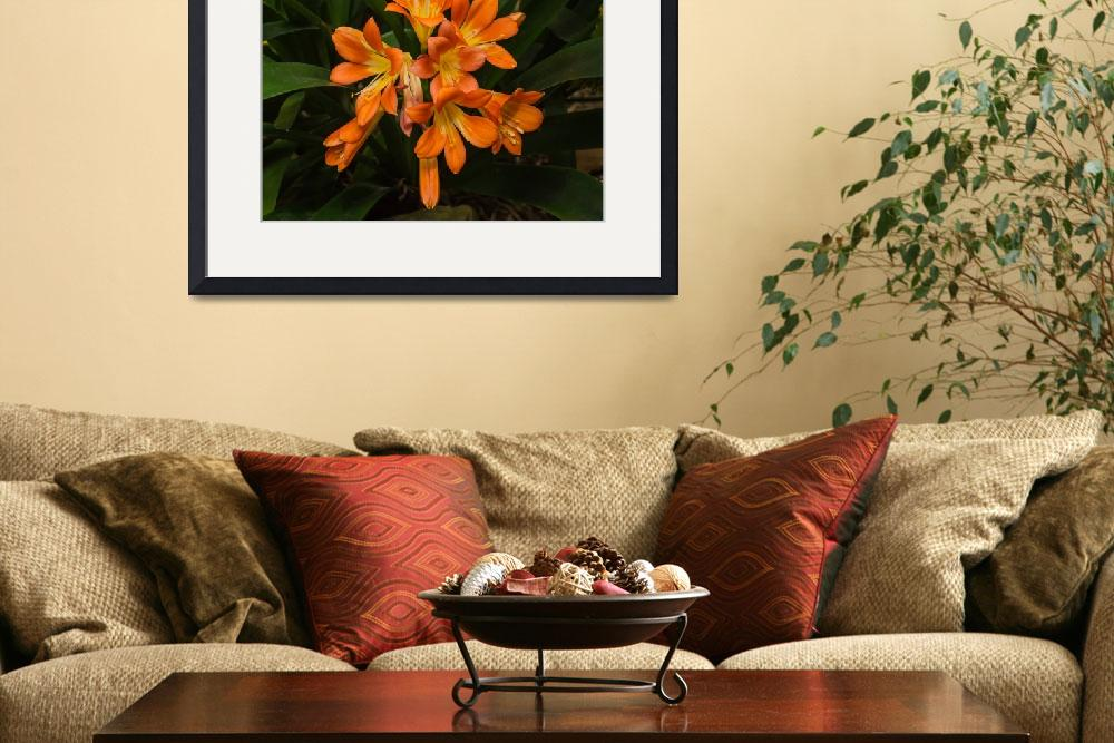 """""""Orange and Yellow Bloom&quot  (2013) by StonePhotos"""