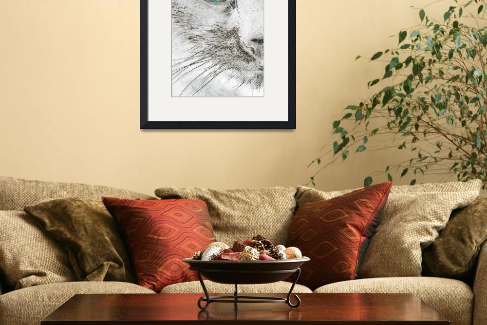 """""""Cat's Eye Abstract&quot  (2009) by evansonart"""