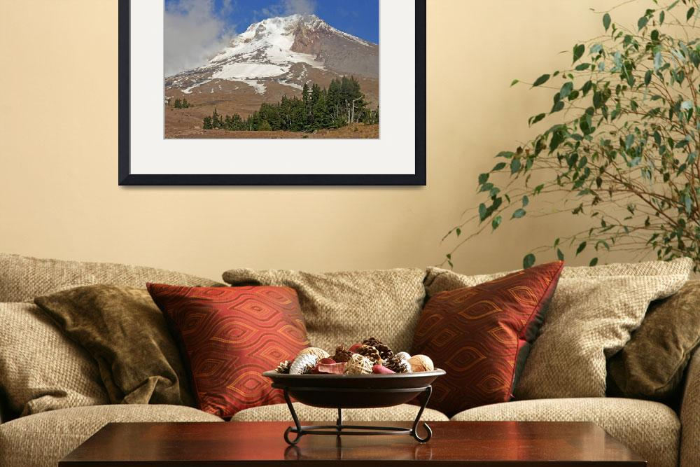 """""""Summer at Mt Hood&quot  (2011) by aRTPhotograph"""