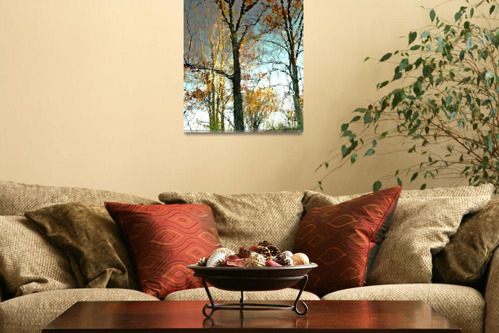 """Oak And Birch Tree Reflections&quot  (2009) by bavosiphotoart"