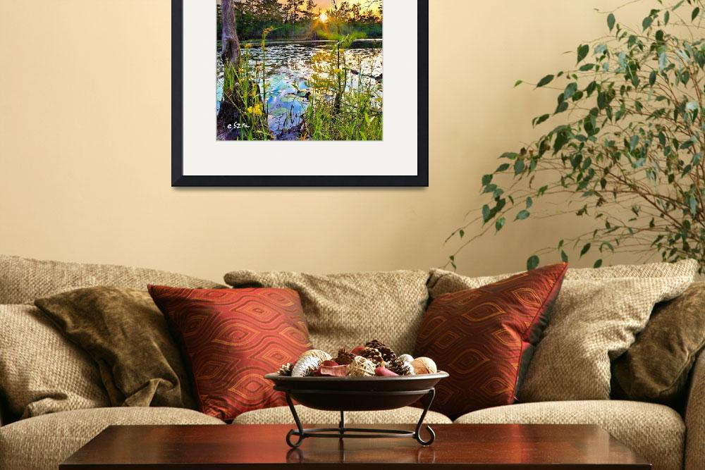 """""""Swamp Sunset Yellow Flowers LilyPad Reflection Art&quot  (2014) by eszra"""