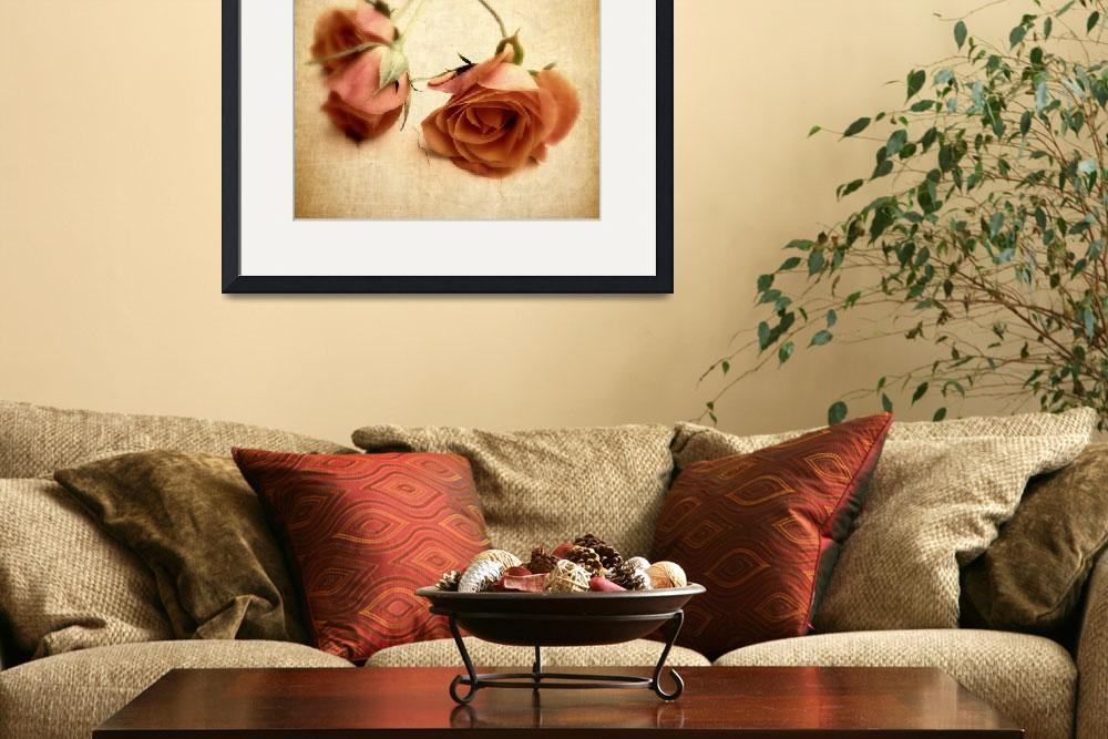 """""""Vintage Rose&quot  (2012) by JessicaJenney"""