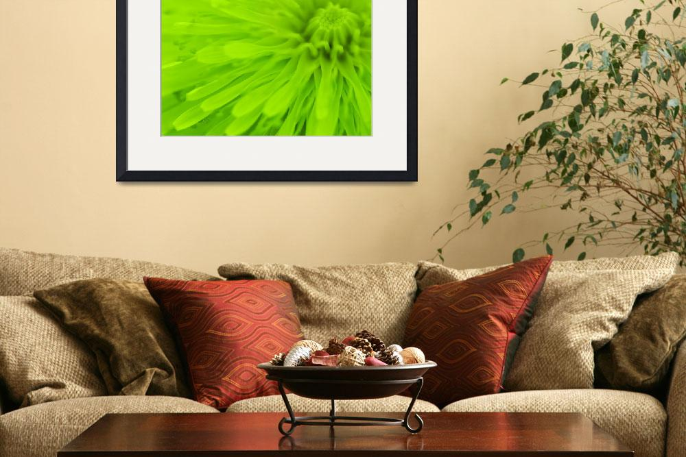 """Bright Lime Green Wall Art&quot  (2011) by NatalieKinnear"