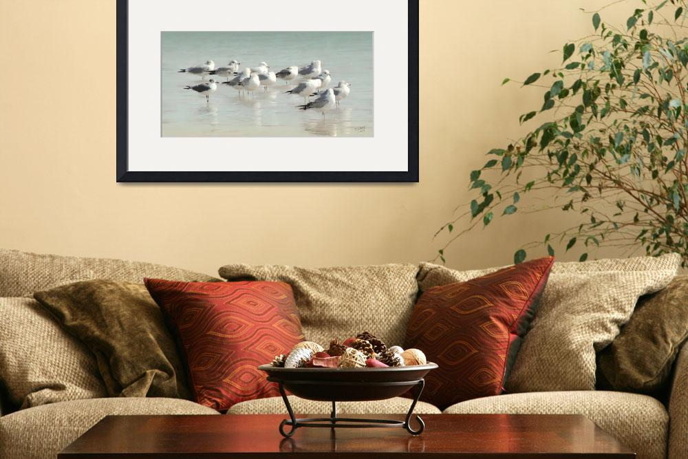 """""""Gulls Wading in the Gulf&quot  (2011) by spadecaller"""