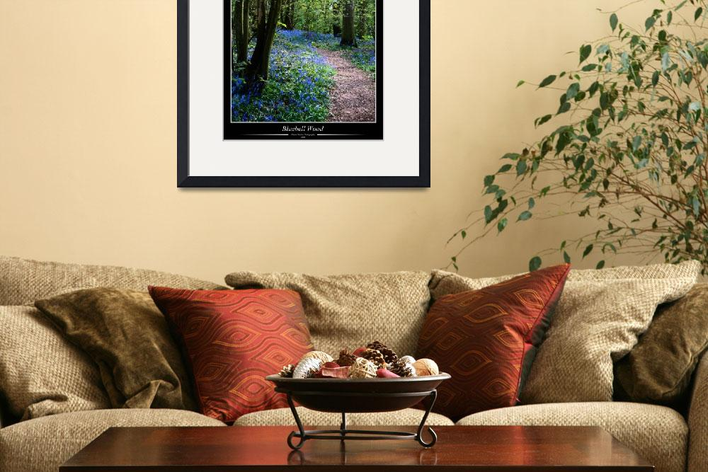 """""""Bluebell Wood&quot  (2008) by Merlin_Studios"""