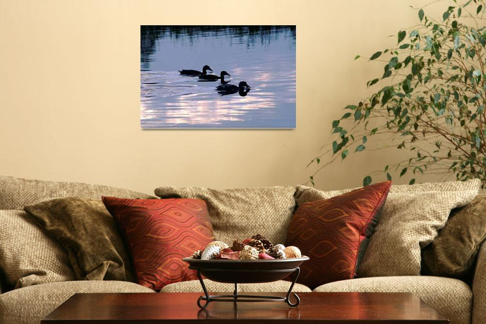 """Mallard Ducks at Dusk  (18257-RDA)""  (2009) by rodjohnson"