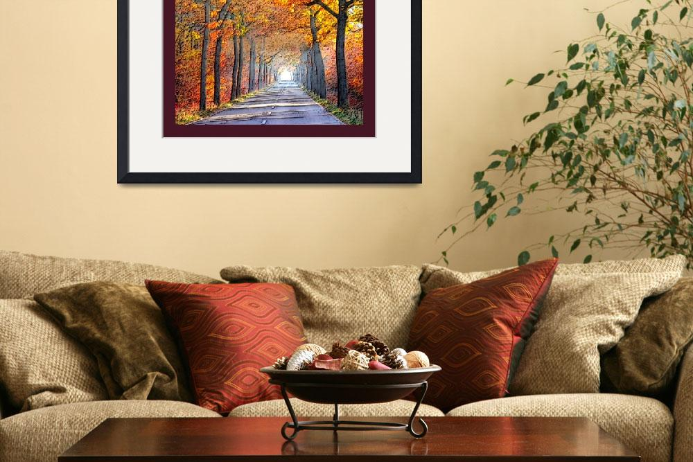 """""""Misty Autumn Byway with border&quot  (2013) by TheNorthernTerritory"""