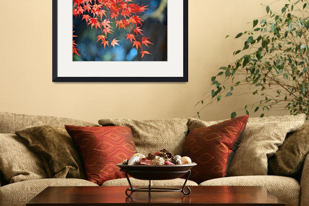 """""""Autumn Colors&quot  (2010) by ImageArt-Photography"""