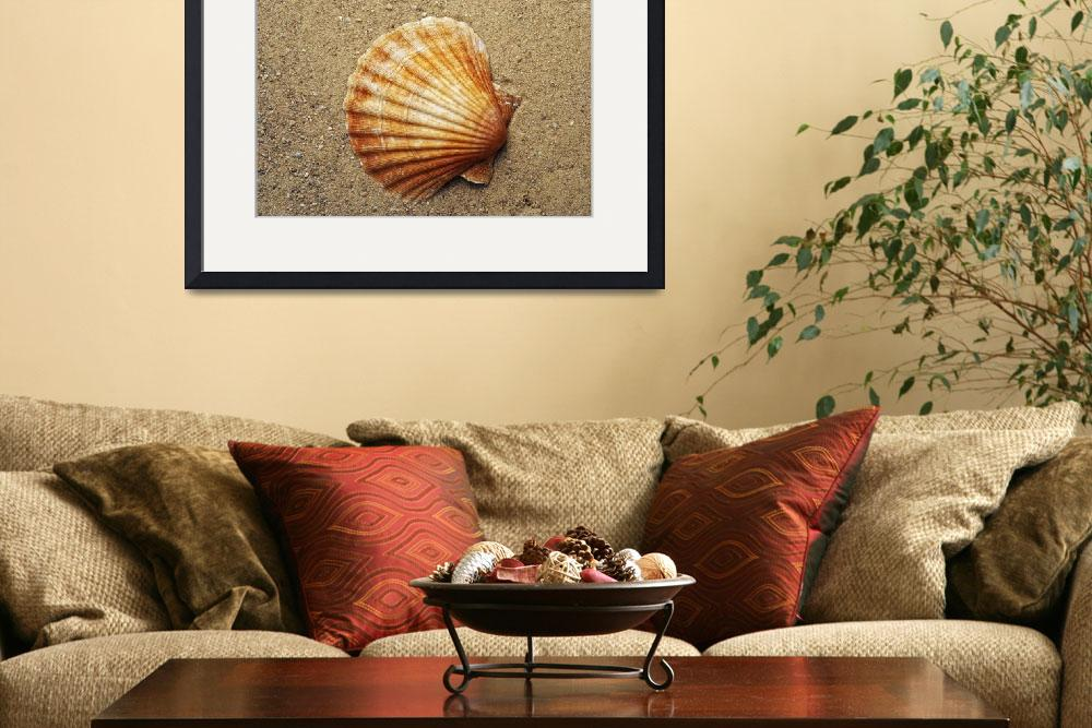 """""""Shell&quot  (2009) by lamich"""